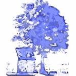 Illustration du profil de Chatoyantes